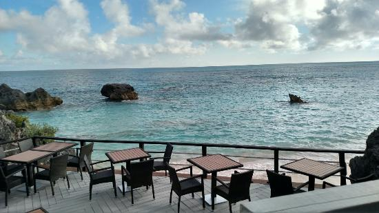 Coconuts: The view from our table