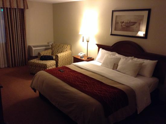 Comfort Inn Santa Rosa : King bed room