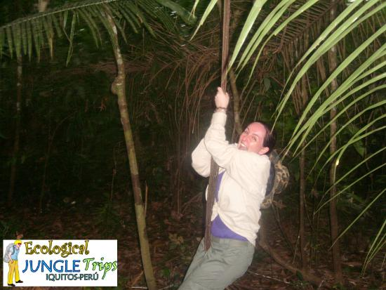 Ecological Jungle Trips: Playing