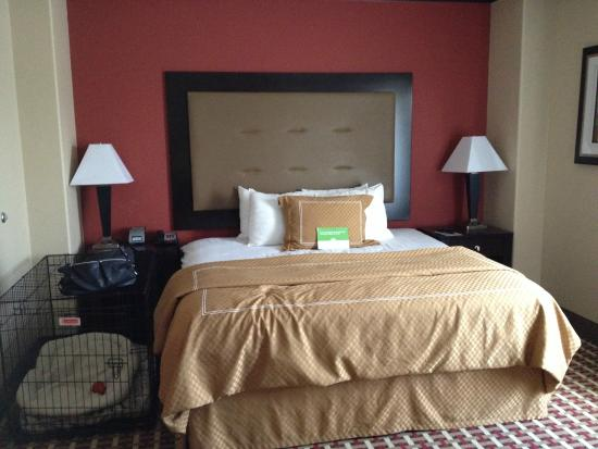 La Quinta Inn Suites Little Rock Bryant Bedroom With Room For Dog Crate
