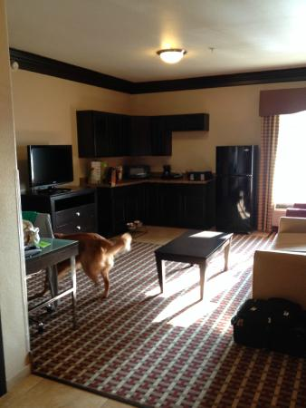 La Quinta Inn U0026 Suites Little Rock   Bryant: Large Living Room/kitchen Area Part 86