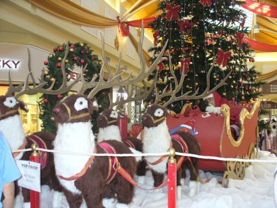Portal Patagonia: Papá Noel