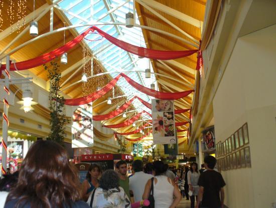 Portal Patagonia: Navidad