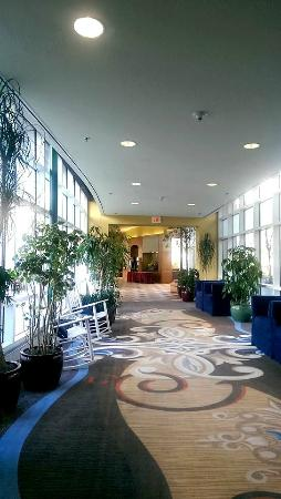 Embassy Suites by Hilton Boston Marlborough: Hotel & grounds