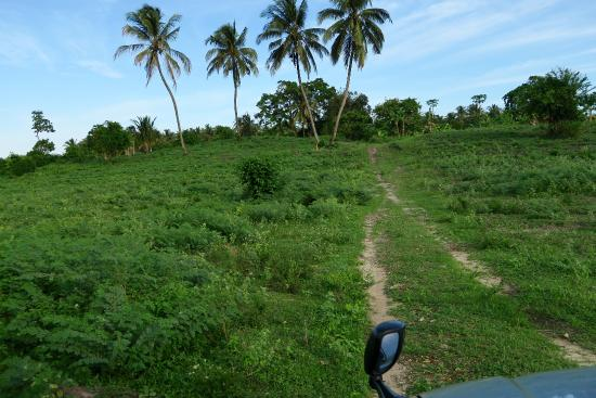 Pemba Island, Tanzania: Fantastic off road experience to get to/ from the resort to the airport!