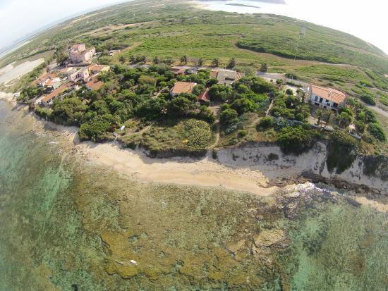 San Vero Milis, อิตาลี: Oasi Felina di Su Pallosu, dove i gatti scendono in spiaggia.Foto da un drone,