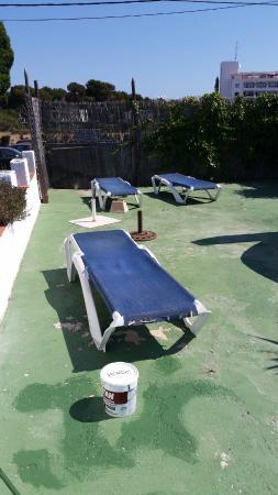 Hostal Flamingo: piscina
