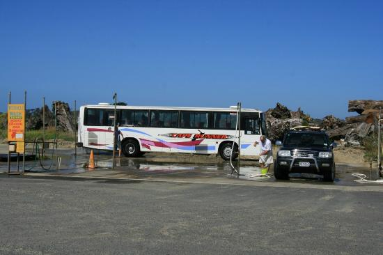 Paradise 4X4 VIP Personalised Day Tours: At the Northland Region Ancient Kauri Kingdom, cars and busses wash their cars