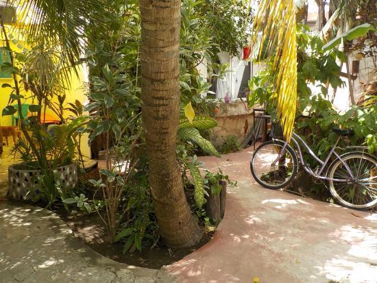 Villa Ana Maria : Common areas