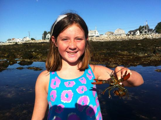 Coast Encounters: Fun for kids of all ages!