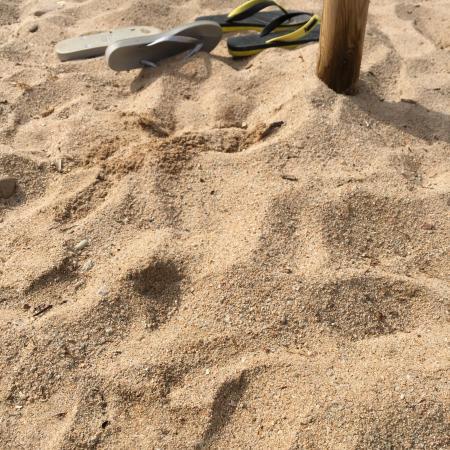 Cervo Hotel, Costa Smeralda Resort: Песок на пляже