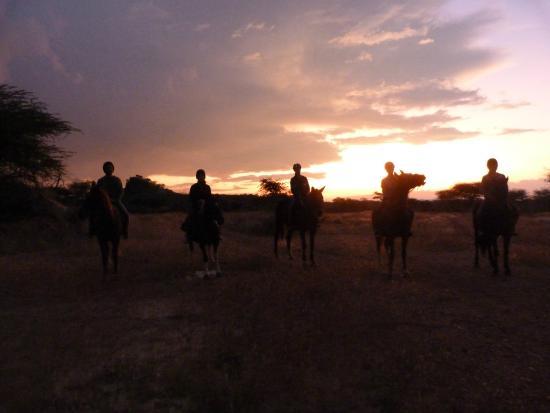 Equitrails Namibia: Sundowner Ride