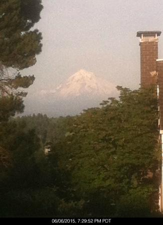 Mt. Scott Manor Bed and Breakfast : Mt. Hood view meters from property