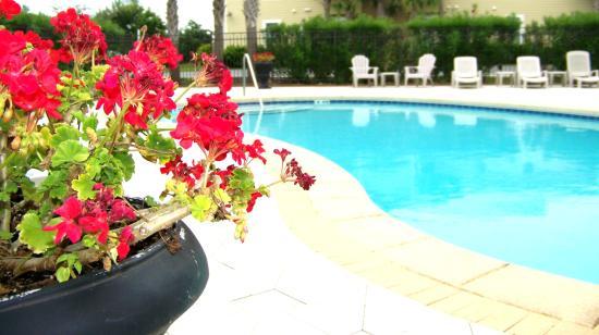 30A Suites: Condo Pool