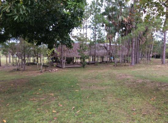 Monkey Bay Wildlife Sanctuary: Chickee at Monkey Bay