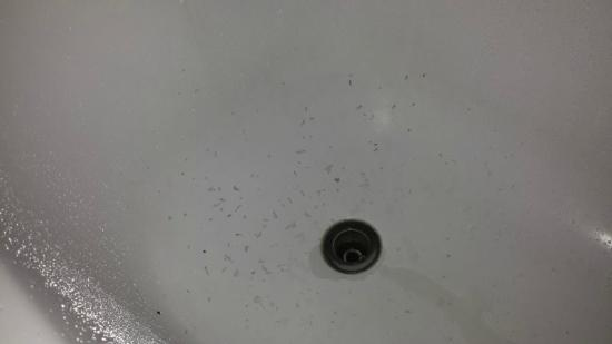 M Suites Hotel: dirt spots