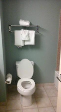 Crestwood Suites Lakeland: clean toilet