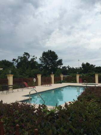 La Quinta Inn & Suites Mobile - Tillman's Corner: Pool