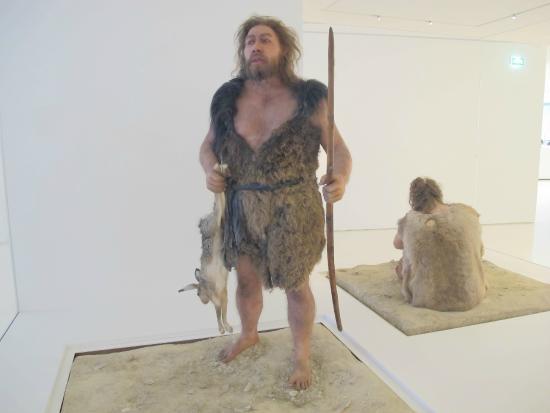 Pole International de la Prehistoire: One rough customer