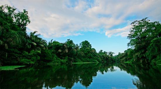 Manatus Hotel: Este paisaje recibe a los visitantes del Hotel Manatus de Tortuguero.