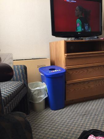 Holiday Inn Winnipeg - Airport West: Trash Bin, Recycle, and TV!!