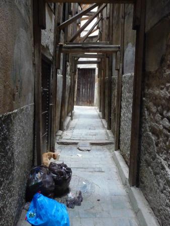 Dar El Menia : calle que lleva al riad
