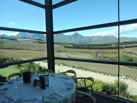 Gourmet Wine Tours: View from the fine dining restarant on the tour