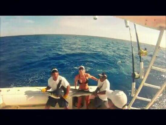 Wasabi Loco Sportfishing Adventures: May 22nd., 8 hr trip. 1 Mahi Mahi, 3 White Marlin!! Capt. Alex and crew were awesome!!