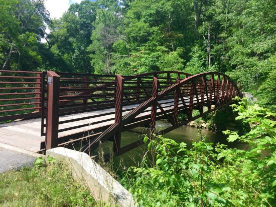 The Greenway Trail: photo2.jpg