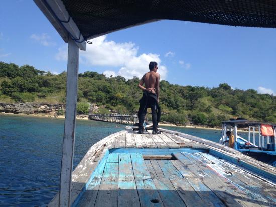 Menjangan Island: island