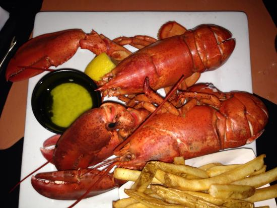 Wildcat Inn and Tavern: Lobster Tuesdays at the Wildcat