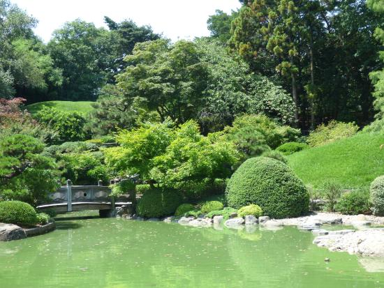 A View From The Pond Picture Of Brooklyn Botanic Garden Brooklyn Tripadvisor