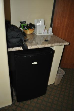 Comfort Inn & Suites Cedar City: fridge