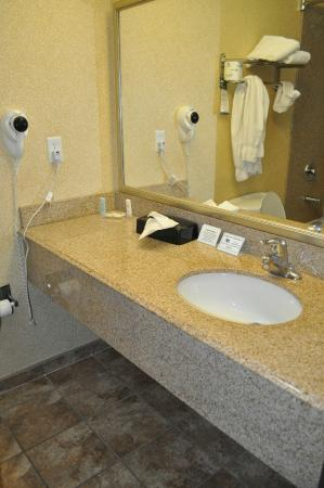 Comfort Inn & Suites Cedar City: vanity