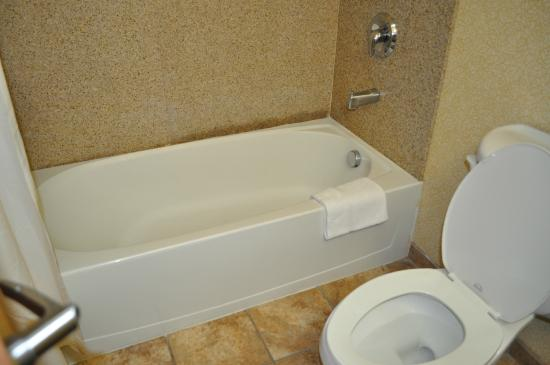 Comfort Inn & Suites Cedar City: tub and shower