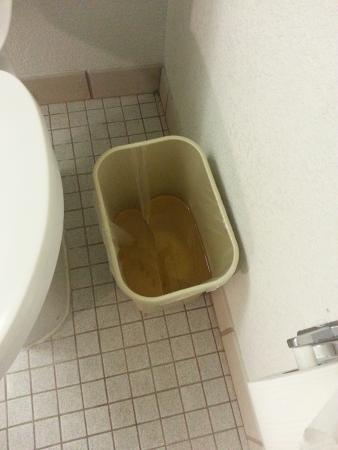 Motel 6 Providence East: water in wastebasket