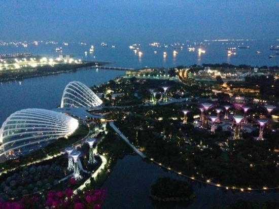marina bay sands garden view at night - Garden By The Bay Marina Bay Sands