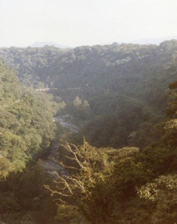 Cardenas Gorge