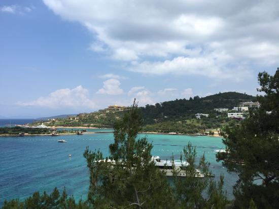 Blue Dreams Resort: photo1.jpg