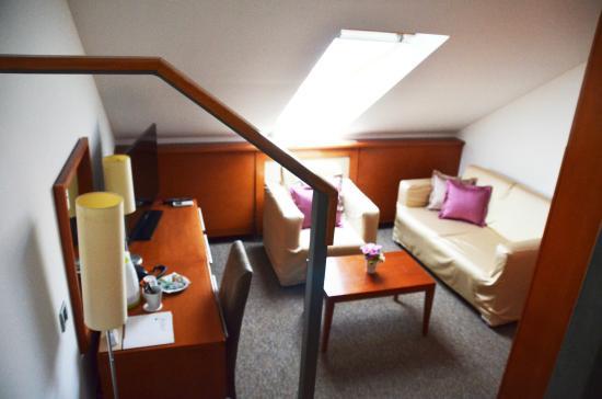 Hotel Le Petit Piaf : Superior room