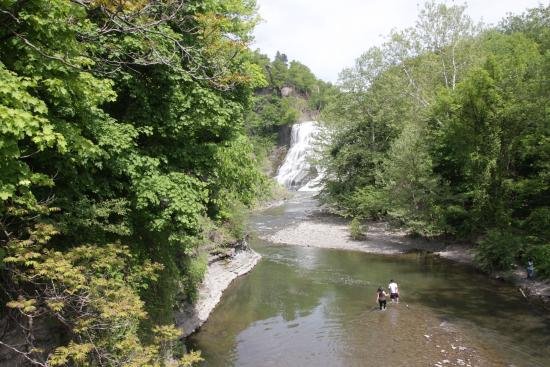 Ithaca Waterfalls: A Gorge in the middle of Cornell Univ.