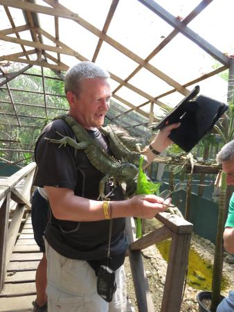 San Ignacio, Belize: Feeding time