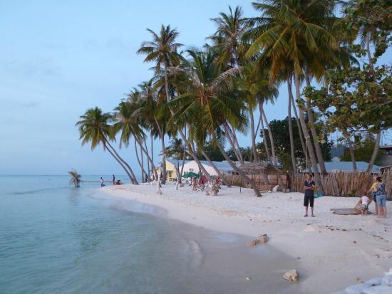 Island Cottage: Beach