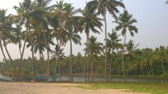MR Beach & Cottages