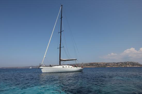 Athena Sail