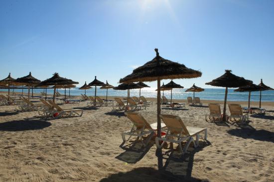 Seabel Aladin Djerba: Beach / Sea