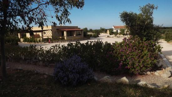 Hotel Sowi : vista giardino