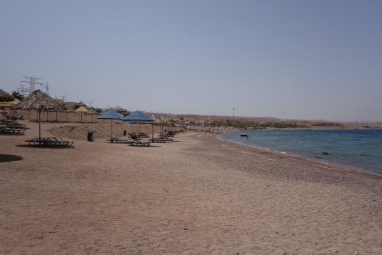 Serviette De Plage Berenice.Plage 2 Photo De Berenice Beach Club Aqaba Tripadvisor