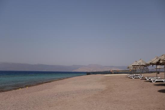 Serviette De Plage Berenice.Plage 4 Photo De Berenice Beach Club Aqaba Tripadvisor
