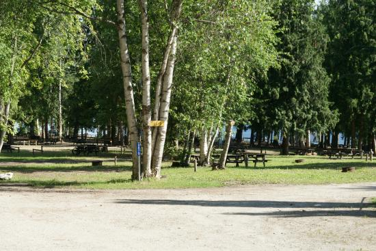 Pierre's Point Campground: Tenting Area